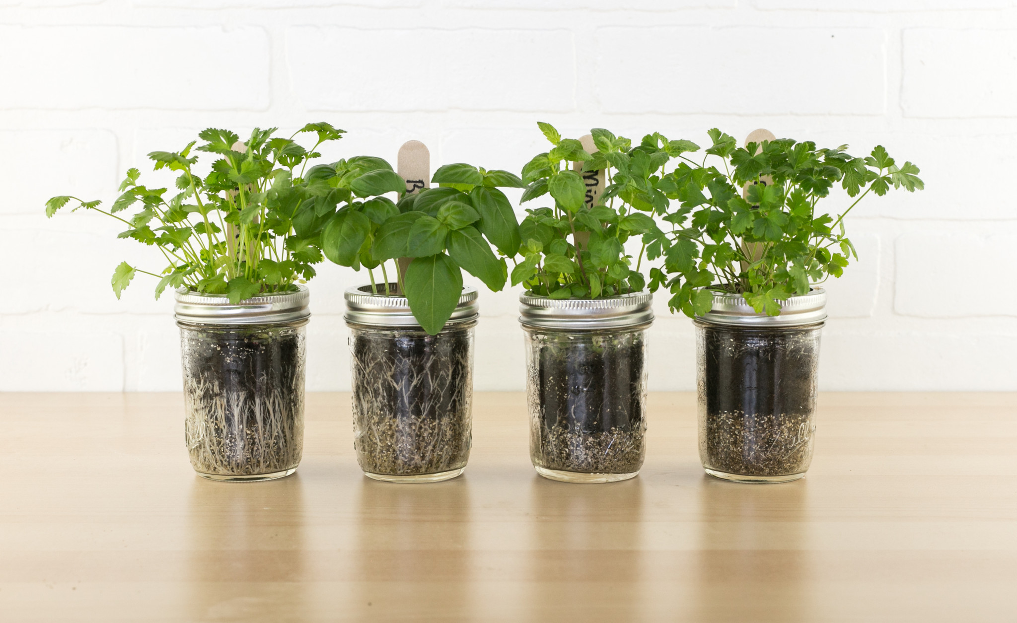 4 Tips On Cultivating Your Rooftop Garden Fairborne Homes